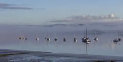 Moorings (Robgreen13) Tags: uk bridge mist reflection clouds sunrise cornwall yacht coastal moorings saltash rivertamar