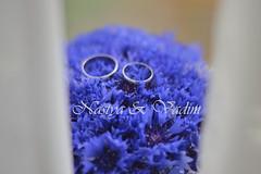 (the_insomnia) Tags: blue wedding summer love wed ring bouquet belarus minsk tenderness cornflowers