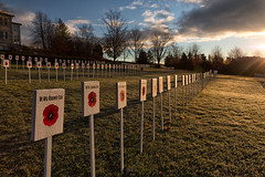 Morning role call (Mark Heine Photos) Tags: aboyne afghanistan canada elora fergus firstworldwar november november11th onehundredthanniversary ontario rememberingthefallen remembranceday secondworldwar wellingtoncountymuseumandarchives markers memorial morning poppies poppy rememberance remembrance rowuponrow sunrise
