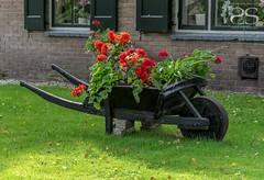 The Cleaning Cart (Shirshendu Sengupta) Tags: venice sea holland netherlands dutch river rotterdam village waterfront scheveningen north maas giethoorn
