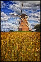 Molen achterhoek (glessew) Tags: netherlands windmill moulin corn nederland paysbas 2009 molen achterhoek niederlande bl rekken graan mhlen eibergen