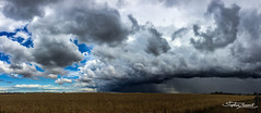 approaching storm (Mr Stevo) Tags: rain weather clouds dramatic temperature stormclouds melbournestorms