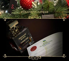 FDB Advent Calendar Day 15 (Fragrance Du Bois) Tags: wild natural pure oud cites oudh aquilaria asiaplantationcapital plantatiom