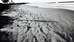 Seaford Beach Adelaide South Australia #dailyshoot #Adelaide   #facebook #monochrome (Leshaines123) Tags: ireland dublin colour composition contrast photography south australia panasonic adelaide rule facebook thirds dazzling iphone 6s dazzlingshots vividandstriking