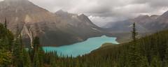 IMG_7187-Pano (Yani Ioannou) Tags: banff alberta canada peyto lake bowsummit rainbow
