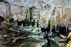 161016 664 grotta gigante (# andrea mometti | photographia) Tags: grotta gigante trieste sgonico caverna stalagtiti stalagmiti umidit