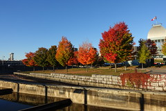 Patinoire du Vieux-Port @ Old Port @ Ville-Marie @ Montreal (*_*) Tags: montreal mtl canada quebec northamerica 2016 autumn fall october city sunny morning villemarie automne vieuxport oldport port