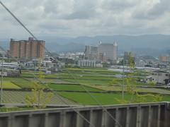 Another look at Hineno (seikinsou) Tags: japan osaka autumn jr railway train kix kansai airport haruka hineno field agriculture wall