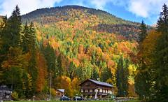Fort d'automne (Diegojack) Tags: paysages france montagnes alpes hautesavoie automne couleurs montriond