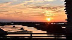 """""""al tramonto 1"""" (Nicola Armari) Tags: salina comaccio ferrara parco delta po"""