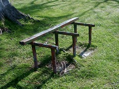 When is a bench no longer a bench? (mikecogh) Tags: apia samoa bench just supports broken change seedpods