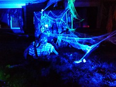 October 31, 2016 - Halloween decorations in Thornton. (LE Worley)