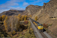 Empties in Hot Sulpur Springs, CO (Brandon Townley) Tags: trains railroad up unionpacific rockymountains coal fall fallcolors autumn