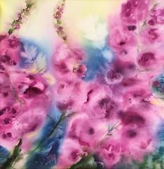 Delphiniums (aquarelle 30/30 cm, travail dans l'humide) (carine hubeaux) Tags: aquarelle rose delphinium fleur printemps bleu