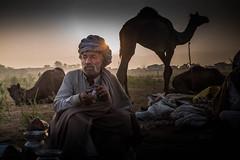 L1002838.jpg (Bharat Valia) Tags: pushkarfair bharatvalia desert bharatvaliagmailcom pushkarmela pushkarimages festivalsofindia pushkar camel pushkarcamelfair sheperd rajasthanportraits