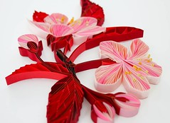 Quilled Plum Blossoms by Judith+Rolfe (all things paper) Tags: quilling onedgepaperart papersculpture judithrolfe plumblossoms
