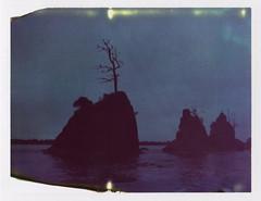 Beacons in the storm (Celina Innocent) Tags: polaroid instant film expired 689 land camera pack garibaldi oregoncoast water rocks birds silhouette dark stormy rain