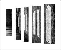 detail III (Stuart Kingston Photography) Tags: silvacane abbey monochrome perspective creative art blackwhite architecture structure tone texture