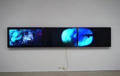 Art and Future_Engery_Climate_Cultures (1) (Dunedin_School_of_Art) Tags: dunedinschoolofart climatechange coal sealevelrise cleanair antarctica watershortage drought earthquakes