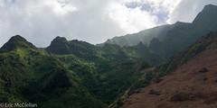 IMG_4230.jpg (ttrumpeteric) Tags: kalalautrail napalicoasttrail travel kauai kapaa hawaii unitedstates us
