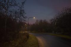 On my way to school (' A r t ') Tags: arthurcammelbeeck cammelbeeck denmark outdoor raw aarhus artcammelbeeck camelendk earlymorning foggy foggyday sky wintermorning wwwflickrcomphotosartcammelbeeck