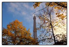 La tour (3) (au35) Tags: tour toureiffel paris tower arbre tree automne ciel nikon d5000