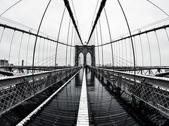 newyork_DSC3401_1 (Jos Aguilera) Tags: newyork new york nueva brooklyn brigde