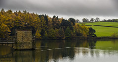 Linacre Reservoir (bigbluewolf) Tags: nikon d7000 sigma 18250 18250mm autumn linacre reservoir trees tree water leaves gold golden clouds cloud cloudy storm stormy sky