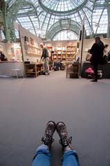 From where I stay (zigazou76) Tags: grandpalais paris parisphoto
