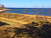 Sandy Point (Suzenews) Tags: beach chesapeakebay sandypoint hike trail