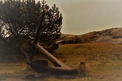 IMG_0038 (www.ilkkajukarainen.fi) Tags: uunisaari helsinki winter finland helsingfors segelsällskap suomi eu europa scandinavia ankkuri suuri big anchor kalliot stones rocks nurmikko sky landscape meri maisema ranta meren