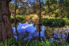 Nature (Kevin_Jeffries) Tags: jeffries nature pond water newzealand nikon nikkor new park tree color d7100 1685mm plant reflection sky bridge landscape grass idyllic shade spring