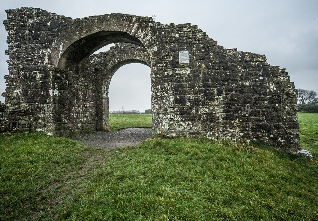 TRIM CASTLE AND NEARBY [COUNTY MEATH]-123597