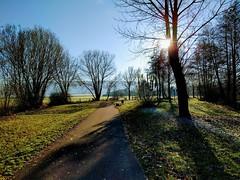 November Sun with Nexus 5X!!! (52er Bild) Tags: outdoor sonnensee bissendorf osnabrück color sun gegenlicht landscape udosteinkamp google nexus landschaft 5x light germany november schatten shadow himmel blauer niedersachsen lowersaxony