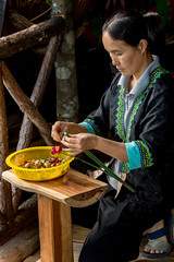 Hmong woman making flowers to sell (maryannenelson) Tags: thailand hmong women tradition people culture