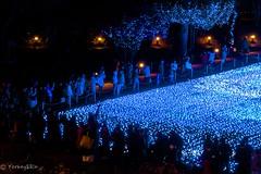 2016 illumination #7 (Yorkey&Rin) Tags:  2016 december em5 fridaynight illumination japan midtown olympus olympusmzuikodigitaled1250f3563ez people rin tc023228 tokyo tokyotower winter woman
