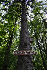 Tree Sign – Zamek Grodno