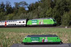 Re 460 080 Migros - Original vs Modell (eisenbahnfans.ch) Tags: suisse bern 187 lys hag modelleisenbahn modellbahn migros re460 h0 regioexpress lyssach werbelok ic2000 460080 hagmodellbahnen originalvsmodell