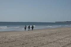 Beach (Paul McNamara) Tags: ireland wexford curracloe