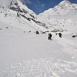 太陽花-20140413-0823-Nepal Trip-ABC Trekking(Annapurna Base Camp)-LR thumbnail