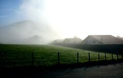 Fog at the morning. Goizeko behelainoa. Niebla maanera. (Amateurland) Tags: morning maana grass fog prado casas niebla caserios