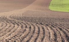 (:Linda:) Tags: germany village thuringia soil furrow twocolors brden