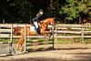 Doorn (Steenvoorde Leen - 2.7 ml views) Tags: doorn manegedentoom arreche paarden springen manege horses jumping hindernis fench 2015 halloween happyhalloween horse pferd reiten paard pferde haloween utrechtseheuvelrug cheval