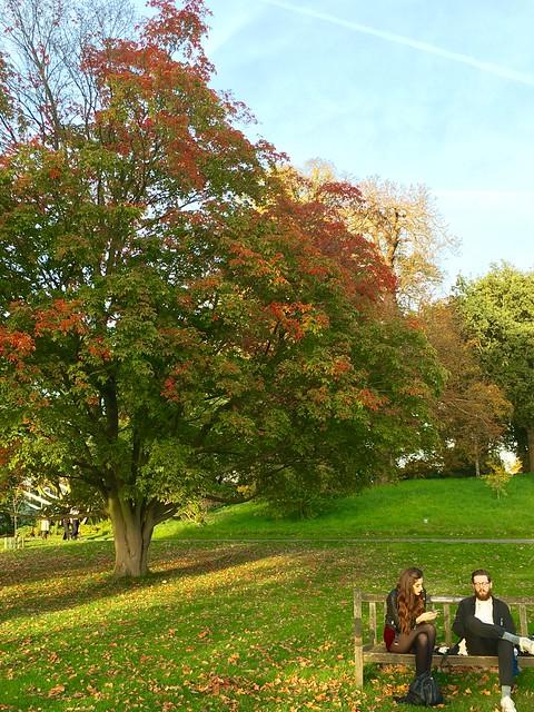 park uk autumn woman man london fall halloween beautiful kew gardens october sitting outdoor richmond