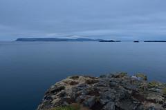 VESTURLAND - evening view from rock at Stykkishólmur (Andrea Zille) Tags: iceland islanda republicoficeland lýðveldiðísland islandazilleandrea