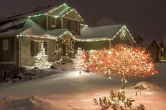 Scene Shot_34 (Christmas World) Tags: lighting christmas trees house holiday tree lights garland led patio wreath incandescent c9 c7 supermini christmaslitescom villagelightingcompany