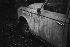 Peugeot 403 PickUp - Classic Cars (Analog World Thru My Lenses) Tags: classic cars pickup peugeot 403 kodaktx400 ricohxr7 rikenon50mmf17