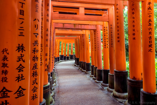 Torii path across the mountain