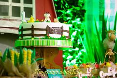 FAZENDINHA DO TULIO 2015 FINAL-38 (agencia2erres) Tags: aniversario 1 infantil festa ano fazenda fazendinha