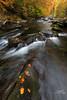 Little River, GSMNP (Avisek Choudhury) Tags: longexposure autumn landscape fallcolor gitzo tennesee greatsmokymountain littleriver gsmnp nikond800 avisekchoudhury acratechballhead nikon1635mm httpwwwaviseknet avisekchoudhuryphotography